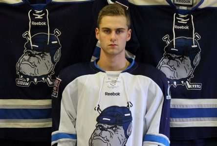 Ligue Junior AA: les Bulldogs font copier-coller